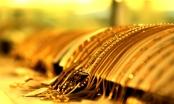 Giá vàng hôm nay 21/8: Chuyên gia dự báo sẽ tăng mạnh