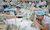 Doanh nghiệp Việt - nước đã đến chân