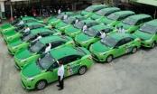 Công ty CP Mai Linh Đông Đô nợ tiền tỷ BHXH, BHYT của hàng trăm người lao động