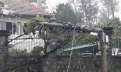 Lâm Đồng cũng chịu ảnh hưởng của bão số 12