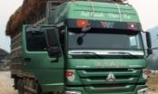 Thanh Hóa: Cảnh cáo Chánh Thanh tra Sở GTVT, khiển trách 4 cá nhân