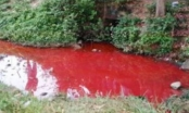 Thanh Hóa: Phát hiện nước xả thải doanh nghiệp đỏ như máu