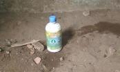 Thanh Hóa: Dùng thuốc diệt cỏ, đôi nam nữ tử vong trong nhà nghỉ