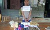 Biên phòng Thanh Hóa bắt đối tượng vận chuyển 12.000 viên ma túy, 180 viên đạn