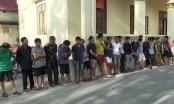 Thanh Hoá: Khởi tố 16 đối tượng trong đường dây trộm chó hàng trăm tấn