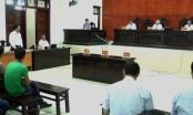 Bài 14: Tòa Quảng Ninh bác đơn khởi kiện, Công ty Sao Bắc gửi đơn kháng cáo lên tòa tối cao