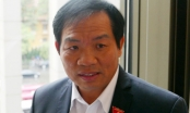 Dừng điện hạt nhân Ninh Thuận để tránh nguy cơ như vụ Formosa
