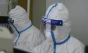 Nhóm nghiên cứu Hồng Kông chế được vắc xin vi rút viêm phổi Vũ Hán