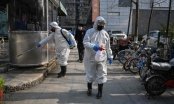 WHO: Quá sớm để nói rằng Trung Quốc đang ở đỉnh dịch virus corona