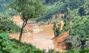 Kỷ luật những lãnh đạo địa phương đề xuất phá rừng
