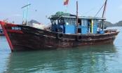 Quảng Ninh: Vụ thi thể vợ, chồng ngư dân trôi dạt trên vịnh Bái Tử Long có thể do tàu bị đâm va