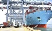 Nhiều doanh nghiệp vận tải biển có lãi, cổ phiếu lên cao