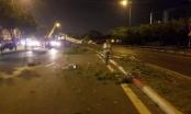 Phong tỏa một phần đường trên đại lộ Võ Văn Kiệt do xe ben tông ngã loạt cây xanh, trụ đèn