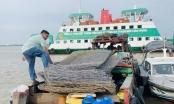 TP HCM: Bắt nhóm trộm vật tư tại dự án ngăn triều chống ngập