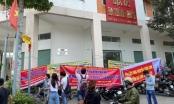 Bình Dương: Bắt Giám đốc công ty bất động sản Ba Thành Phát