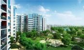 Công bố quy hoạch nhà ở, cây xanh phường Mễ Trì