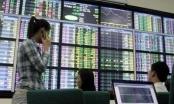 Cấp thêm mã chứng khoán cho 177 nhà đầu tư ngoại