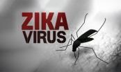 Virus Zika tăng nhanh, TP HCM tiếp tục đối phó với bệnh quai bị