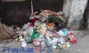 Hà Nội: Công ty Minh Quân không thu gom rác, người dân phường Đại Mỗ sống trong ô nhiễm