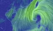 Tin mới nhất về bão số 11: Có thể giật cấp 15
