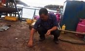 Tiến độ sửa chữa, bàn giao tàu 67 cho ngư dân Bình Định bị chậm trên 1 tháng
