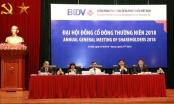 BIDV tổ chức Đại hội đồng cổ đông thường niên năm 2018
