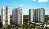 Có nên trao hết quyền cho ban quản trị nhà chung cư?