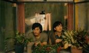 Số phận phim nghệ thuật và phim thị trường 'hên xui' do nhà phát hành?