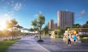 Vì sao Vingroup lại có ý tưởng xây dựng công viên Gym và công viên BBQ tại các Đại đô thị VinCity