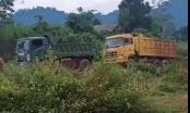 Mâu thuẫn khai thác khoáng sản ở Nghệ An: Đề nghị hai bên ngừng hoạt động để giải quyết tranh chấp
