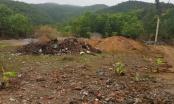 Quảng Ninh: Chưa rõ nguồn gốc đất, xã Hạ Long vội vã cho đơn vị thi công đào xới đất