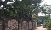 Đông Anh: Phát hiện thêm cuốn sổ đỏ được ký khống tại xã Xuân Canh