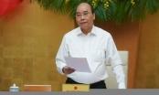 Thủ tướng đưa ra biện pháp nhằm bình ổn giá thịt lợn