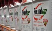 Bayer chi gần 10 tỷ euro giải quyết vụ kiện liên quan thuốc diệt cỏ