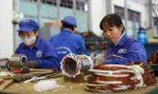Tin kinh tế 6AM: Số doanh nghiệp thành lập mới trong tháng 6 khởi sắc; Vàng giữ vững đà tăng giá