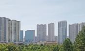 Giá bất động sản sẽ tăng khoảng 10% bất chấp dịch Covid-19