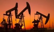 Giá dầu thế giới chạm đỉnh 1 năm