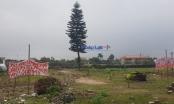 Thái Bình: Vì sao chủ đầu tư vội vàng tạm dừng đấu giá khu dân cư thôn Phú Xuân