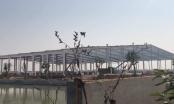 Công ty CP chế biến nông sản thực phẩm xuất khẩu Hải Dương xây dựng công trình không phép