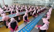 Lắng nghe tiếng nói của lao động nữ di cư