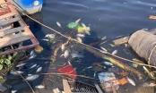 Sông Cầu ô nhiễm, lộ diện 97 cơ sở gây ô nhiễm môi trường tại TP Bắc Ninh