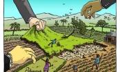 Lấn chiếm hơn 26.000m2 đất, Công ty CP Đầu tư Phát triển Đức Trí bị xử phạt