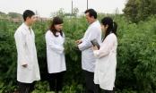 Dược phẩm Tâm Bình: Các sản phẩm chất lượng từ nguồn dược liệu sạch