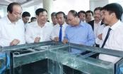 Thủ tướng Nguyễn Xuân Phúc: Việt Nam phấn đấu trở thành một công xưởng sản xuất tôm của thế giới