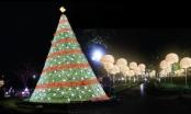 TTTM EcoLife Capitol: Khai trương tưng bừng - Mừng đón Giáng sinh
