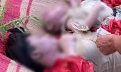 Chuyên gia tội phạm học phân tích vụ thi thể 3 mẹ con khiến dư luận bàng hoàng