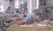 Tết 2016: Bệnh nhân nhập viện do nhiễm hóa chất, thuốc diệt chuột,… gia tăng