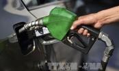 Giá dầu thế giới chấm dứt 4 tuần tăng liên tiếp