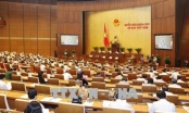 Ngày 8/6: Đại biểu Quốc hội thảo luận, biểu quyết thông qua nhiều dự thảo Luật, Nghị quyết