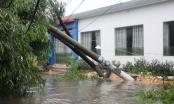 Thái Bình: 1 người đàn ông tử vong trong khi khắc phục sự cố mất điện sau bão